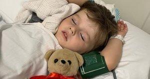 Po gyvatės įkandimo berniukas liko paralyžiuotas (nuotr. facebook.com)