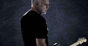 David Gilmour (Kevin Westenber)