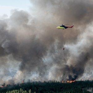 Sibirą apėmusi ugnis: rekordiškų karščių pagimdytos liepsnos naikina miškus