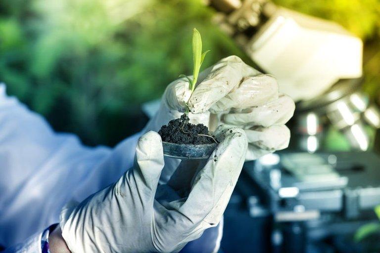 Agroinovacijos (nuotr. 123rf.com)