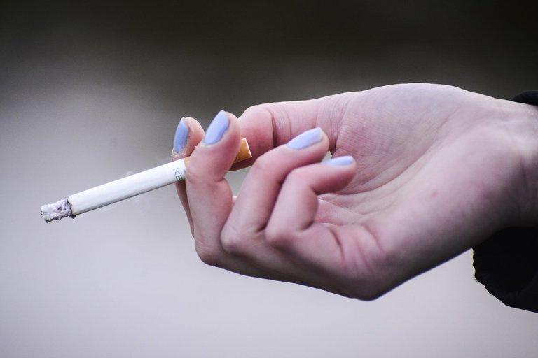 Nors Latvijoje akcizai didėja, cigarečių paklausa nemažėja (nuotr. Fotodiena.lt/Pauliaus Peleckio)