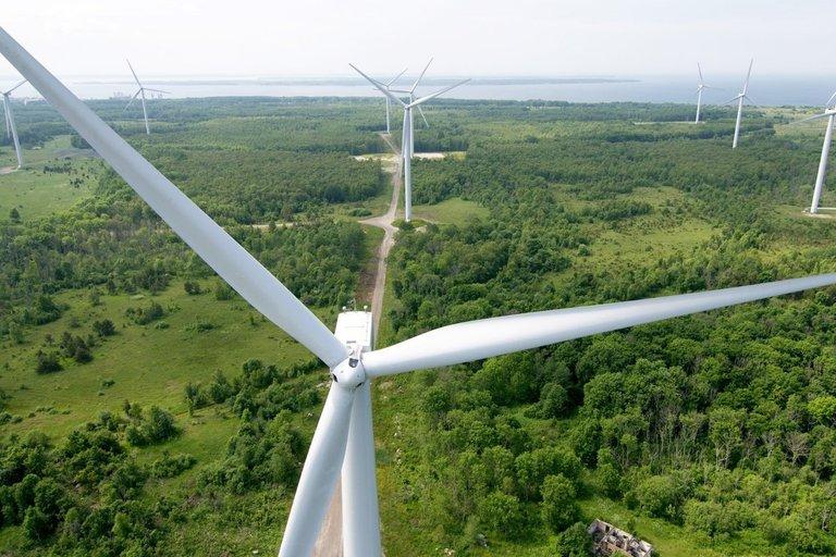 """Enefit Green"" vėjo elektrinės (nuotr. bendrovės)"