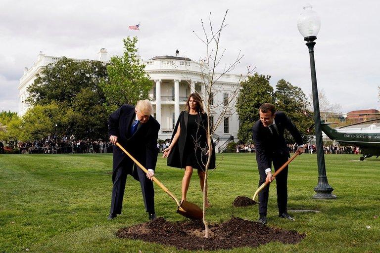 Donaldas Trumpas su Emmanueliu Macronu sodina ąžuolą (nuotr. SCANPIX)