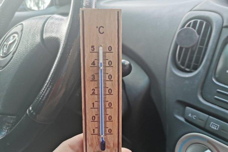 Vilnietė užfiksavo temperatūrą mašinoje (nuotr. asm. archyvo)