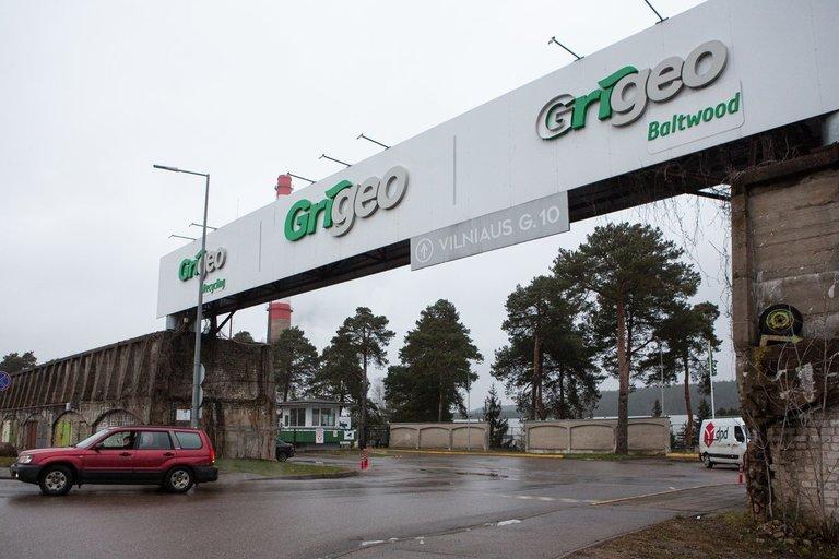 Grigeo (Greta Skaraitienė/Fotobankas)