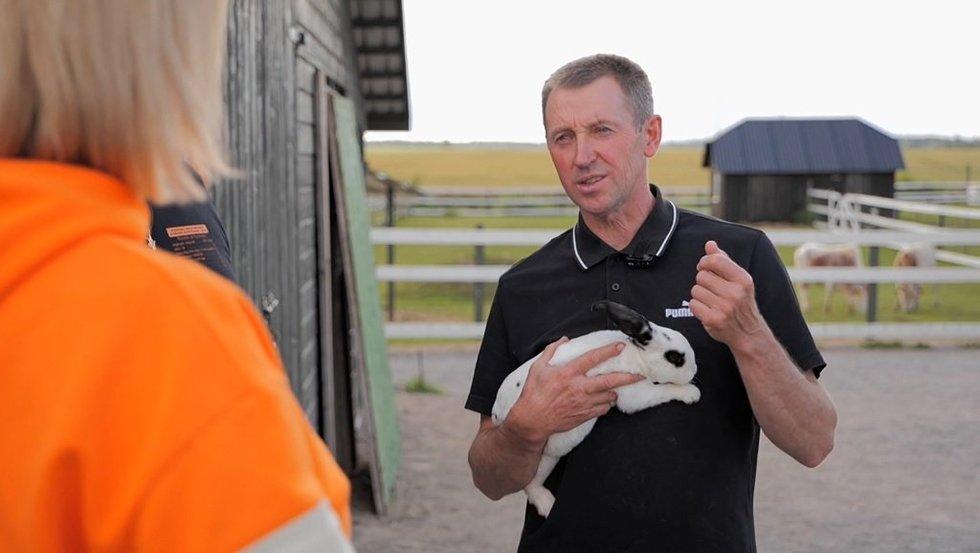 Alpakų ūkis traukia turistus iš visos Lietuvos: galima paglostyti ir pamaitinti