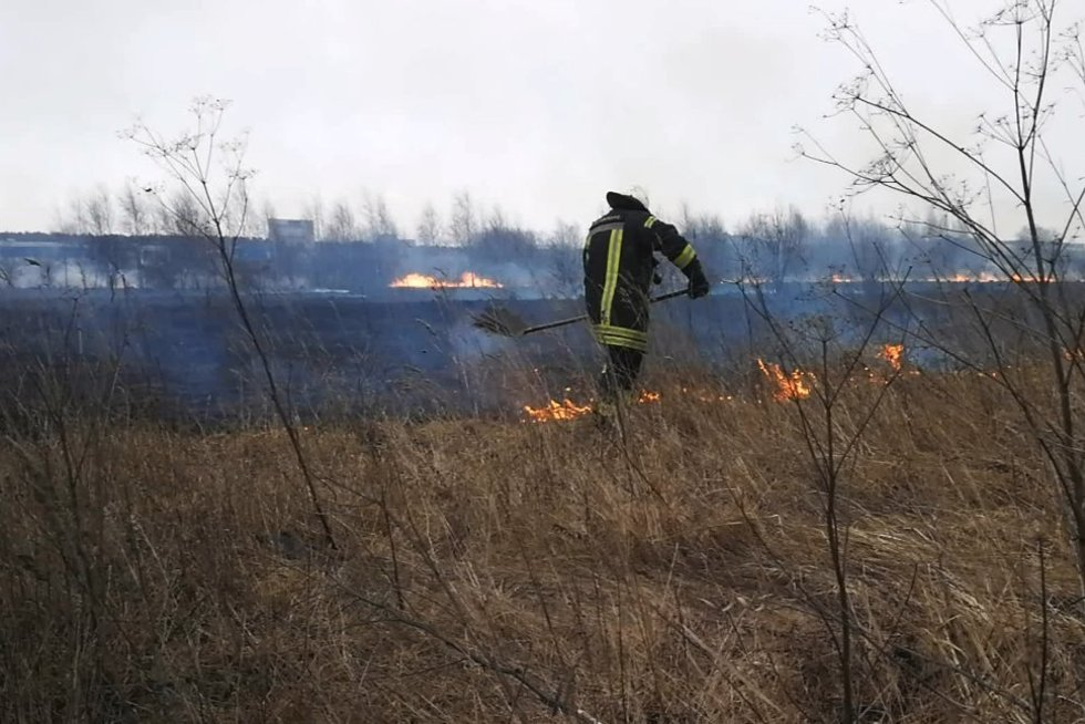 Žolės padeginėtojai pradėjo sezoną (nuotr. stop kadras)