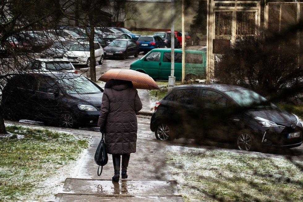 Orai (nuotr. Fotodiena/Justinas Auškelis)