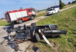 Košmaras kelyje prie Kėdainių: 26-erių vairuotojas neturėjo jokių šansų išgyventi