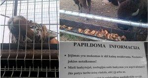 Apsilankymas Klaipėdos zoologijos sode