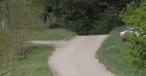 Narkevičius – vėl įvykių sūkuryje: Trakų rajone sustabdytas keliuko remontas kelia daug klausimų (nuotr. stop kadras)