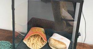 """Interneto naudotojai jau dešimtmetį stebi """"McDonald's"""" mėsainio irimo procesą (nuotr. SCANPIX)"""