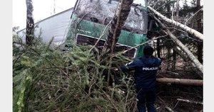 """Vilkiko vairuotojo nelaimė: užmigo """"Via Baltica"""" kelyje ir rėžėsi į pakelės medžius (nuotr. Rinkos aikštė)"""