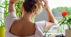 Šukuosena  (nuotr. Shutterstock.com)