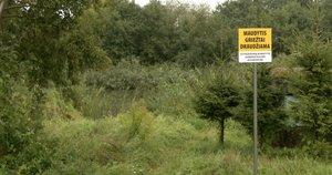 Klaipėdiečiai nesupranta: per naktį prie Danės upės išdygo ženklas, draudžiantis maudynes (nuotr. stop kadras)