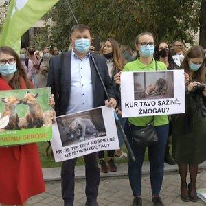 Po į viešumą kylančių nelegaliose veisyklose kankinamų šunų skandalo, Vilniuje – protestas