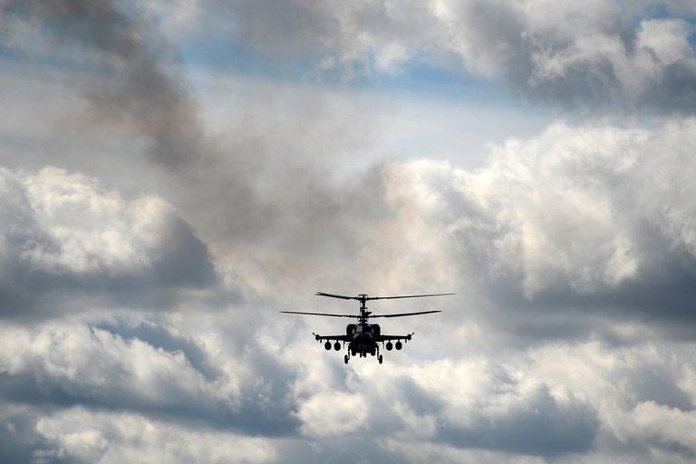Sraigtasparnis (nuotr. SCANPIX)