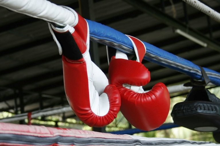 Bokso ringas ir boksininko pirštinės (nuotr. 123rf.com)