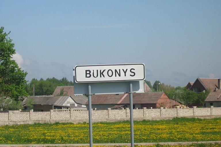 Bukonys (nuotr. Wikipedia)
