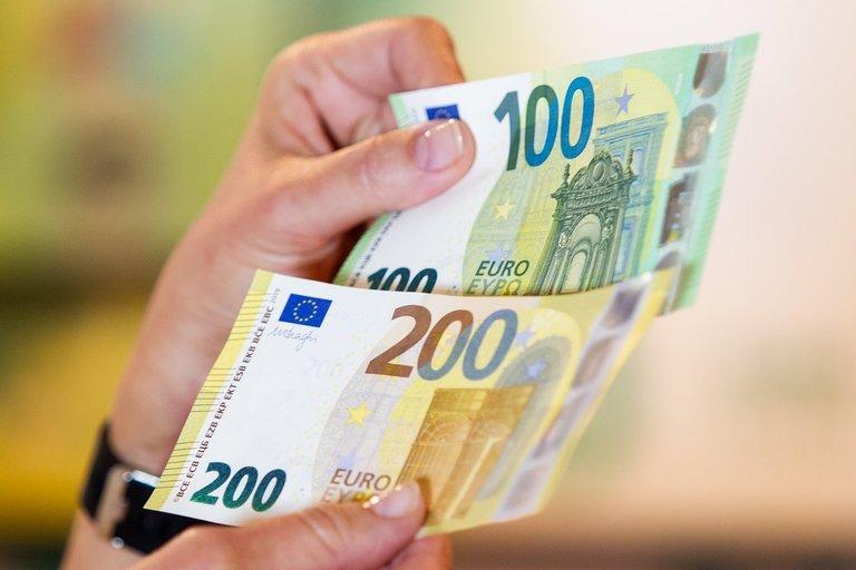 Eurai (nuotr. Irmantas Gelūnas/Fotobankas)