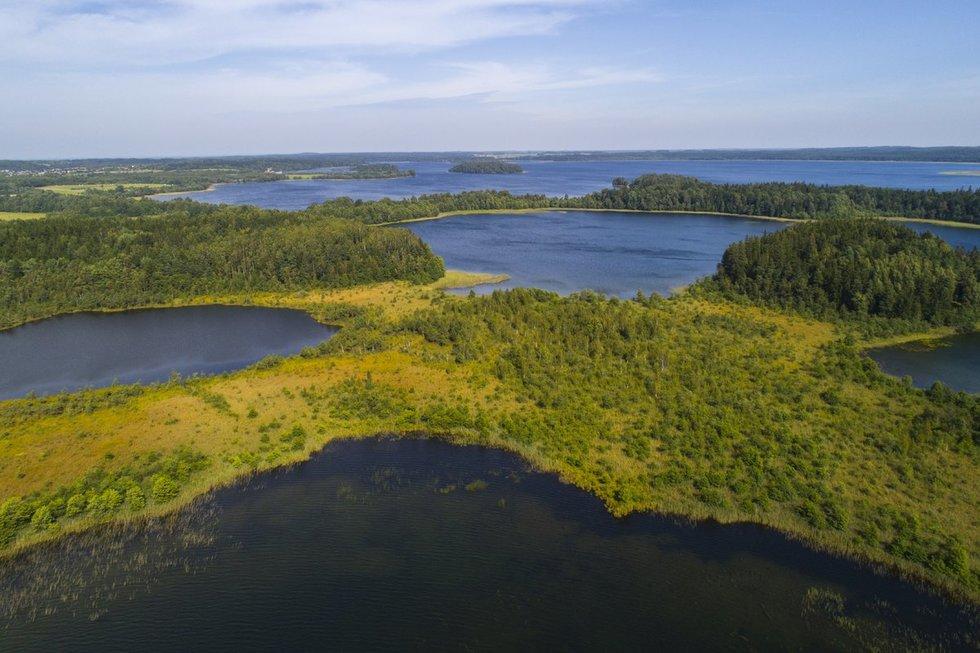 Platelių ežeras (nuotr. Gediminas Mažeika)