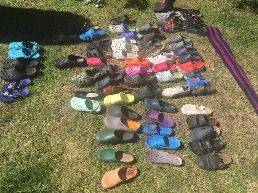 Įspūdinga batų lapės kolekcija