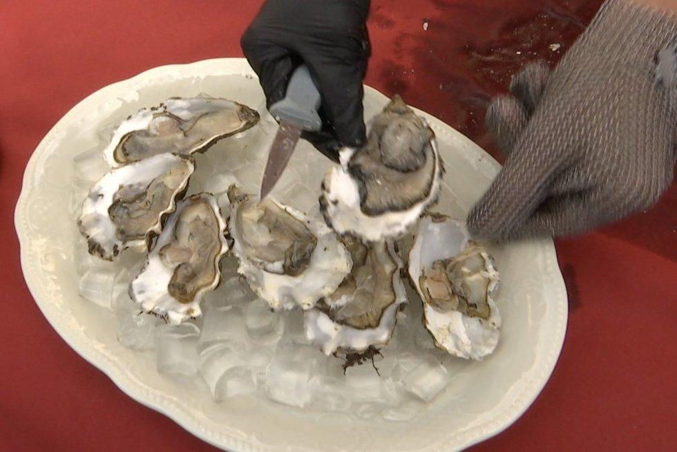 Moliuskai – ne tik smagu, bet ir itin sveika valgyti: bet lietuvius gąsdina mitai (nuotr. stop kadras)