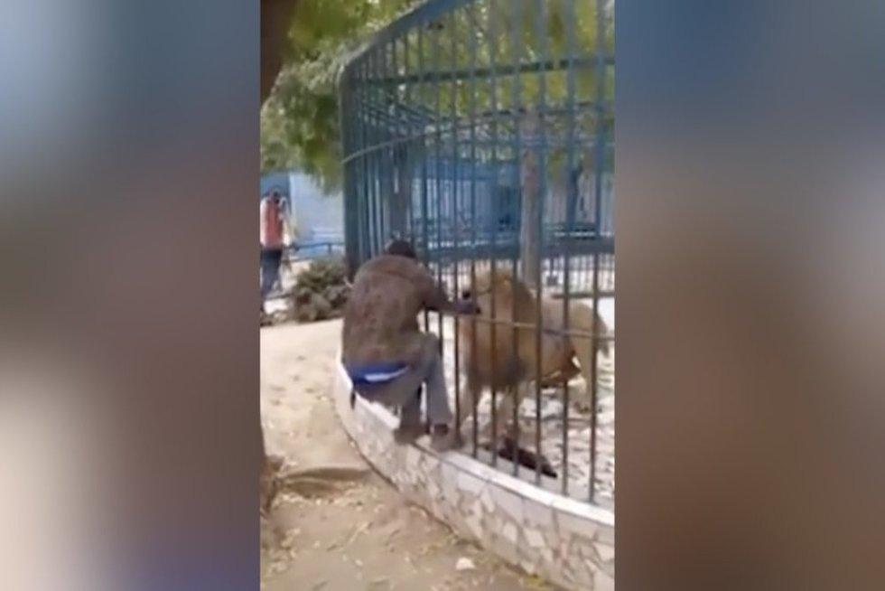 Zoologijos sode – lankytojus sukrėtęs incidentas: prižiūrėtojas rėkė iš siaubo (nuotr. stop kadras)