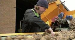 Nesutarimai dėl mažesnių algų jaunimui: noras padėti įsidarbinti ar diskriminacija?