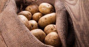 Bulvės (nuotr. Shutterstock.com)