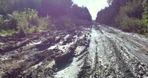 Vairuotojai piktinasi: po lietaus miškų ir laukų keliai tampa nepravažiuojami (nuotr. stop kadras)