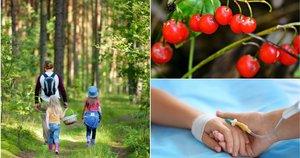 Vilnietės dukrai po apsilankymo miške teko plauti skrandį: dabar įspėja kitus (nuotr. shutterstock.com)