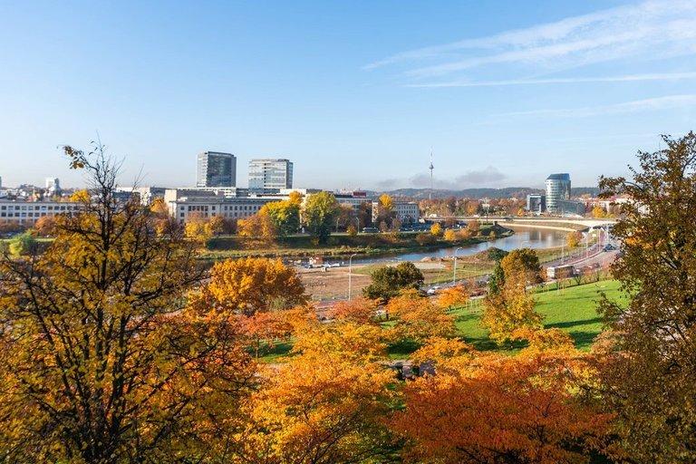 Ruduo Vilniuje (nuotr. Shutterstock.com)