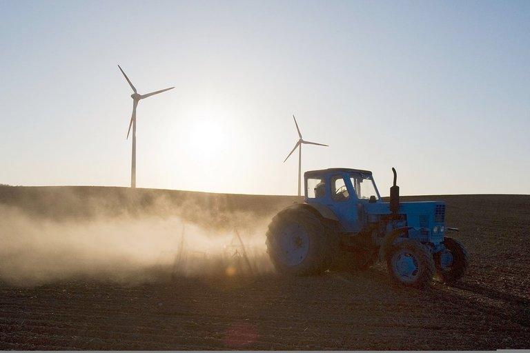 Traktorius (nuotr. Fotodiena.lt/Audriaus Bagdono)