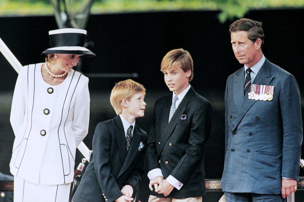 Princesė Diana, princas Harry, princas Williamas, princas Charlesas