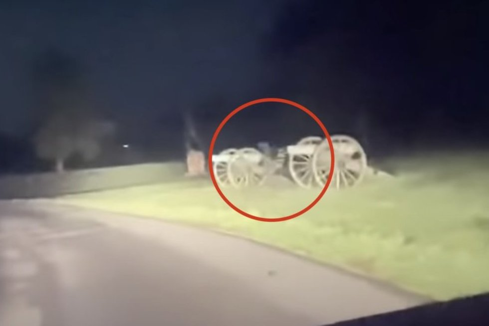 Šalikelėje pamatytas vaizdas pašiurpino vairuotoją: negalėjo patikėti tuo, ką užfiksavo (nuotr. stop kadras)