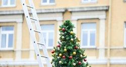 Viltis dėl Kalėdų ne karantine gyva? Veryga ragina susitaikyti, kad šventės bus kitokios