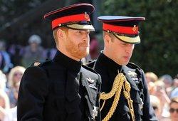 Princo Hario šeimoje – skaudi netektis: mirė brangus žmogus