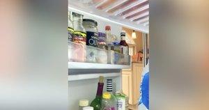 Šaldytuvas (nuotr. stop kadras)
