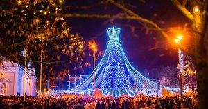 Kalėdų eglė sostinėje 2019 m. (nuotr. Fotodiena/Justino Auškelio)