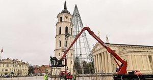 Katedros aikštėje pradėta montuoti Kalėdų eglė (nuotr. Evaldas Činga)