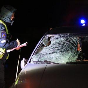 Nelaimėmis paženklintas vakaras: netoli Panevėžio mirtinai partrenktas jaunas vyras
