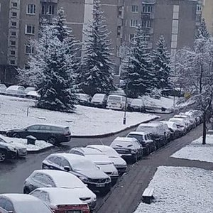 Į Lietuvą atkeliauja žiema: šalyje krenta pirmasis sniegas