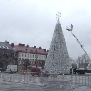 Pirmoji papuošta Kalėdų eglutė – Panevėžyje: 18 metrų žaliaskarė bus įžiebta netrukus