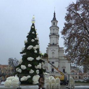 Vilnius ir Kaunas konkuruoja: pamatykite, kaippuošiamos eglės