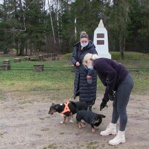 Šiaulių rajone oloje įstrigusį taksų veislės šunį šeimininkės bandė gelbėti kone tris valandas