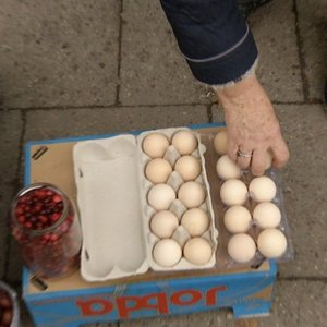Įspėja perkančius kiaušinius iš močiučių turguje: įbruka senų ir netinkamų vartoti