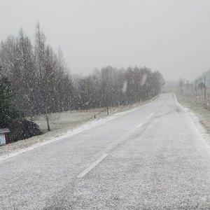 Lietuvoje iškrito pirmasis sniegas: žmonės socialiniuose tinkluose dalijasi vaizdais