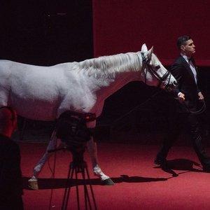 """Jankevičius į apdovanojimų sceną atsivedė žirgą: """"Pasirodo, kad jų bijau"""""""