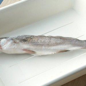 Baltijos jūroje – naujokė:žvejai mokslininkams pristatė dar nematytą žuvį